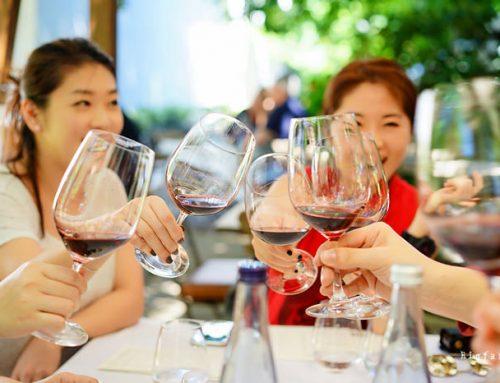 [2019/03]南非酒庄之旅,踏上世界六大葡萄产区,品酒去 [南非开普敦自由行]
